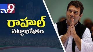 Congress celebrates as Rahul Gandhi set to assume charge as President - TV9