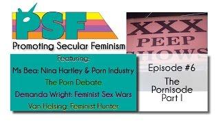 Episode #6 - The Pornisode, Part I