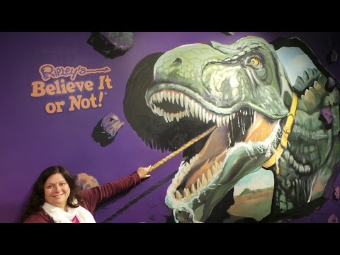 Ripley's Believe It or Not 2017 Collection - i drive Orlando