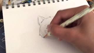 Dorawr - How to draw a Red Panda