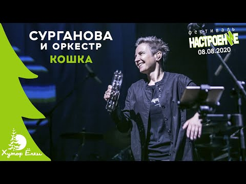 Сурганова И Оркестр - Кошка