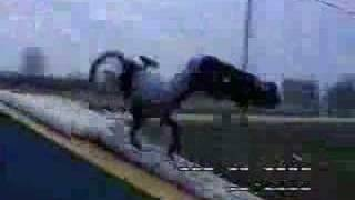 bmx backflip determination