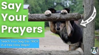 Dog Trick: Say Your Prayers/ Hide and Seek