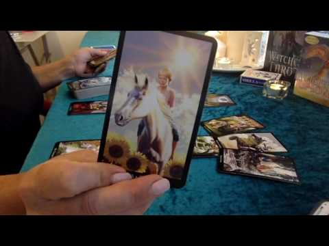 "CANCER 🌺 ""DESTINY CALLS""  FEB 2017 🌺 LOVE TAROT & ORACLE READING"