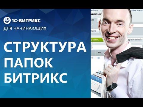Форекс прибыльные стратегии видео WMV