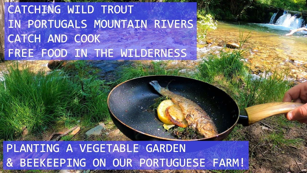TROUT FISHING IN A PORTUGUESE MOUNTAIN RIVER - CATCH AND COOK RIVER SIDE - PLANTING VEGETABLE GARDEN