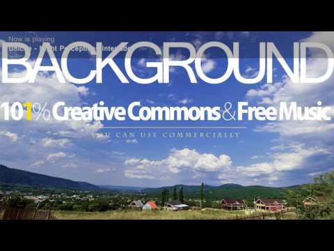 Background Music | Creative Commons music [Unicite - Night Perceptions Interlude_(101CCF_Version)]