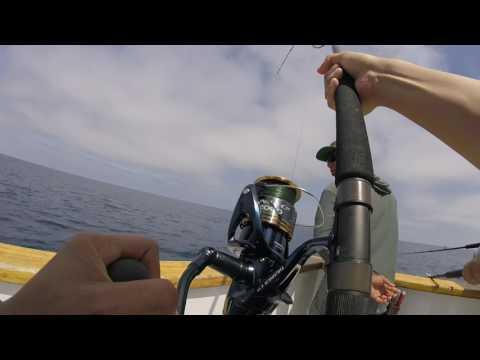 Fighting a Bluefin Tuna May 04 2017