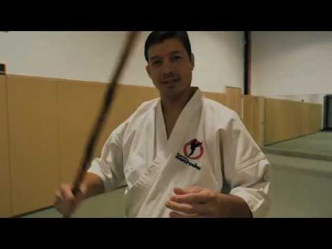 Aperture Unscripted: The Effective Use of Katas | Machida Karate vs Pekiti Tirsia Kali