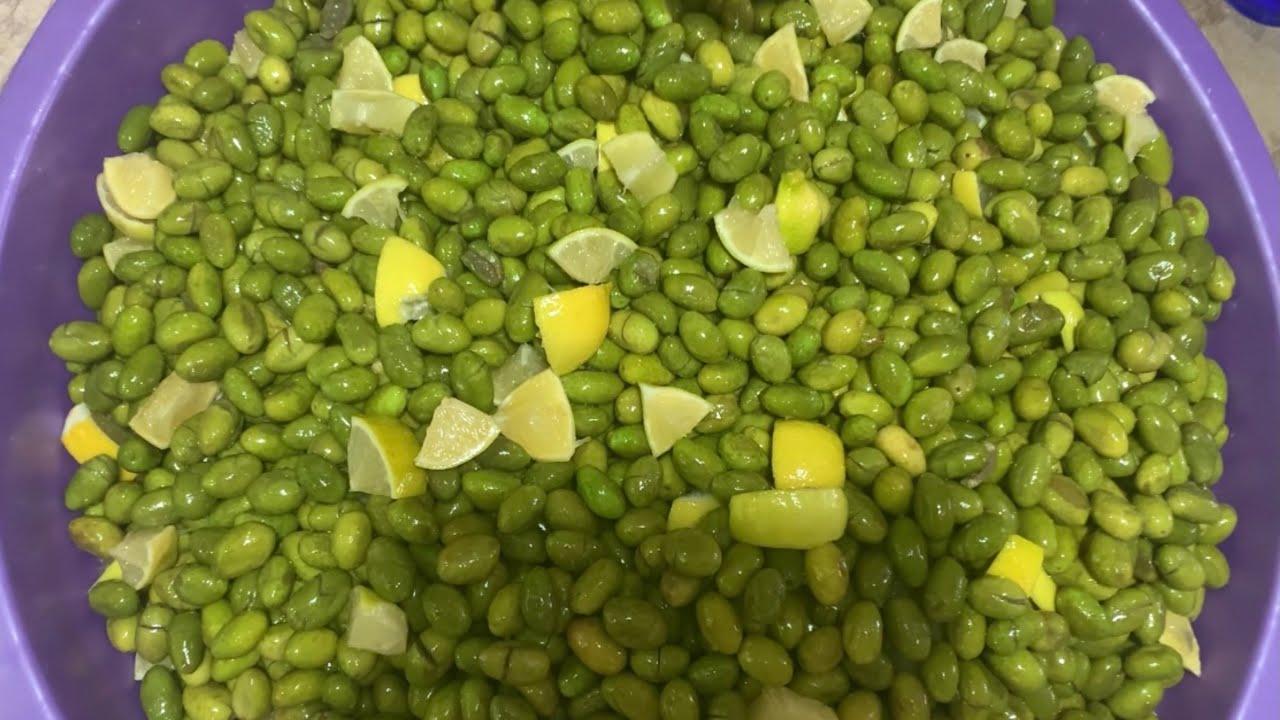 أسهل طريقة لكبس الزيتون الأخضر بالتفصيل