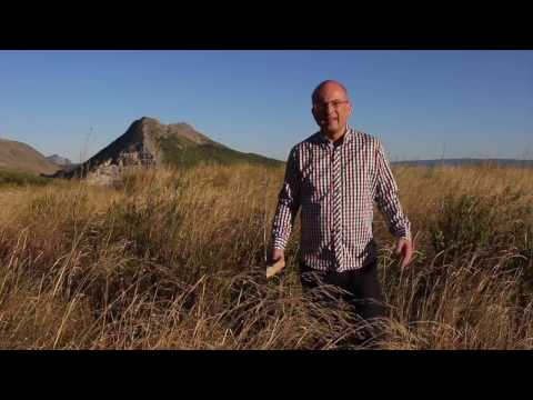 Survival: The Story of Global Health. Episode 1: How Did We Avoid Extinction?