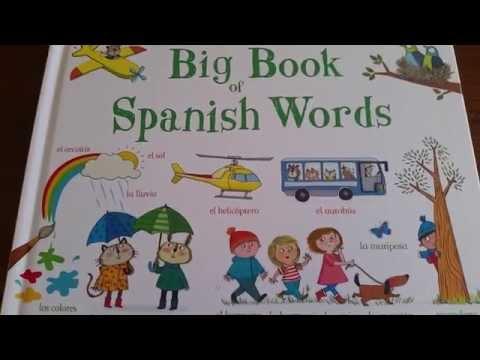 Big Book of Spanish Words: Usborne Books & More