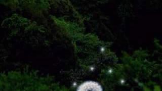 moero downhill night 2