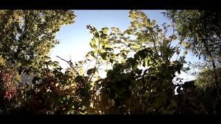Gopro Hero 6 Cinematic Test Footage | Slow Motion Test thumbnail
