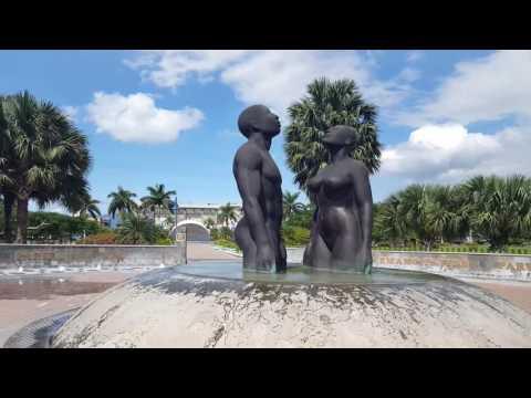Jamaica Vlog 19 - Walk Through The Park and Fire Alarms!