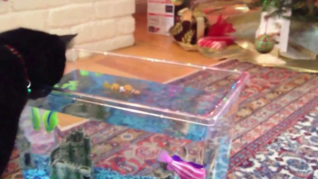 Robo fish youtube for Robo fish tank