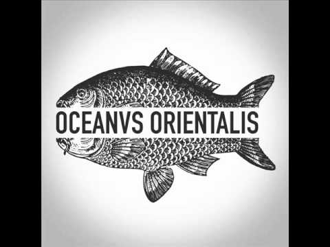 Oceanvs Orientalis - White Ocean - Burning Man 2015