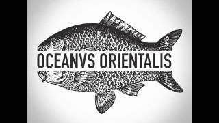 Oceanvs Orientalis - White Ocean - Burning Man 2015
