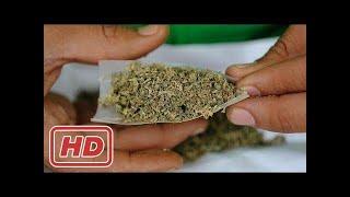 Marihuana-Konsum in Deutschland - Die neue Lieblingsdroge - Doku 2017 (NEU in HD)
