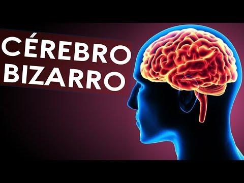 O que seu cérebro pode fazer com você?   Casos Incríveis