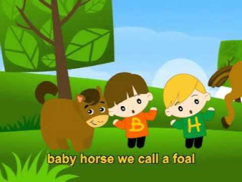 musik lagu anak karaoke bahasa inggris baby animals english song youtube