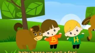 Musik Lagu Anak Karaoke Bahasa Inggris - Baby Animals (English Song)