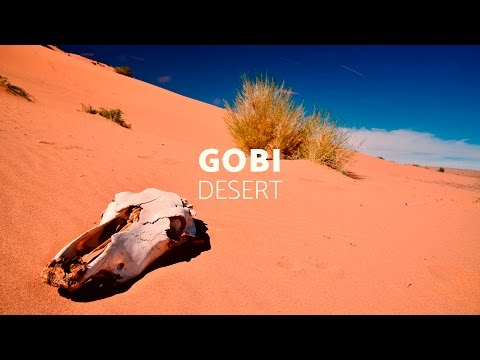 Mongolia Gobi Desert - 8 day tour in Mongolia 🐫