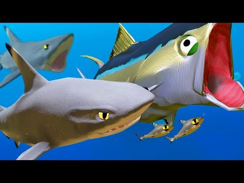 New Black-Tip Shark vs New Tuna! - Feed and Grow Fish - Part 66 | Pungence