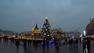 Krakow Christmas Tree