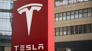 tesla-factory-prep-delayed-german-court