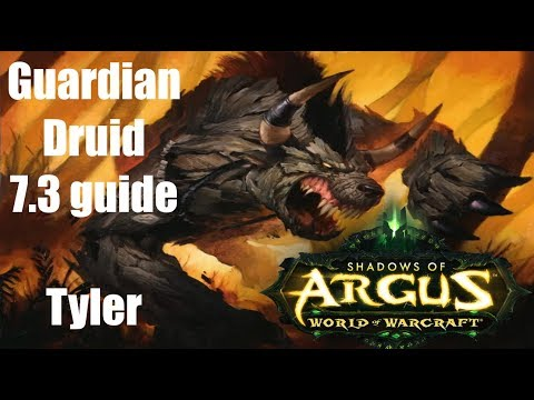 GUARDIAN DRUID 7.3 GUIDE!!! (NEW)