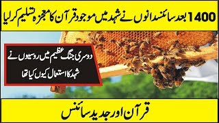 Unknown Facts of Honey And Bee According to Science And Quran