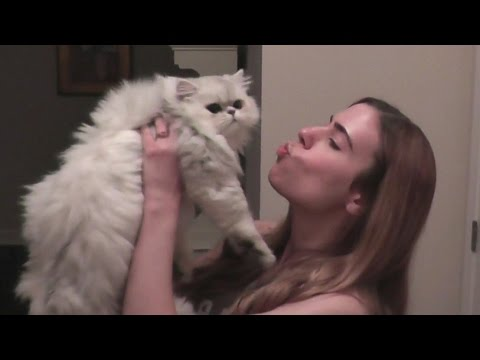 JEN REUNITES WITH OUR KITTEN CLOUD!