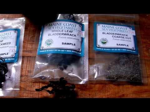 Seaweed, Ocean Edibles, Salt, and Iodine:  A Pantry Raid