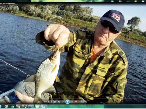 Видеоотчет о рыбалке, д. Бронница, Новгородская обл., река Мста 06.08.2016г.