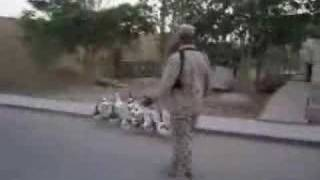 Drill sergeant in Iraq drilling ducks and geese