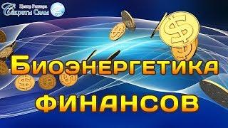 """Семинар Сергея Ратнера  """"Биоэнергетика финансов""""."""