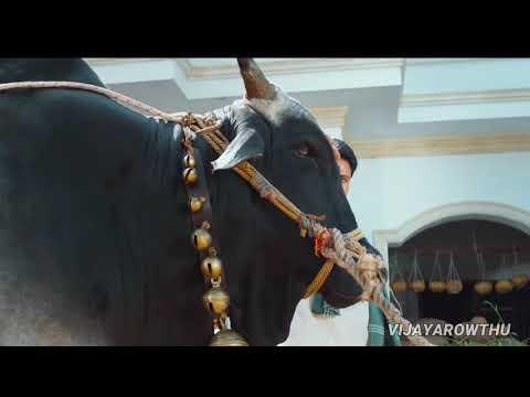 Happy birthday to power star pawan kalyan
