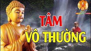 Tâm Vô Thường Giữa Dòng Đời Biến Ảo Hãy Nghe Phật Dạy Dù Chỉ 1 Lần Tiêu Tan Mọi Phiền Não Khổ Đau