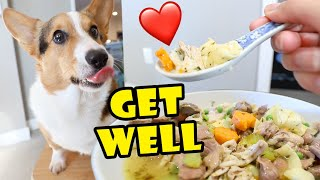 Poor CORGI'S Get Well Chicken Soup || Life After College: Ep. 680