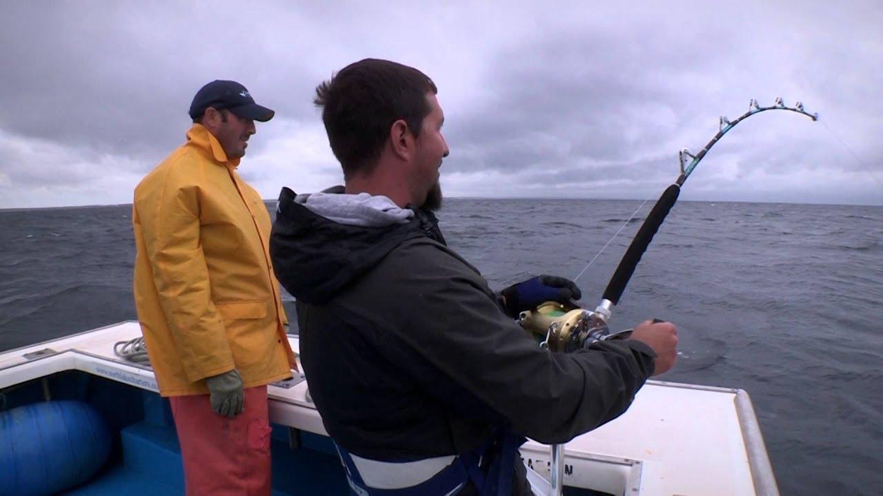 Monster fish trev gowdy prince edward island tuna 2014 for Tuna fishing season