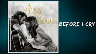 Lady Gaga - Before I Cry (Lyrics) Video