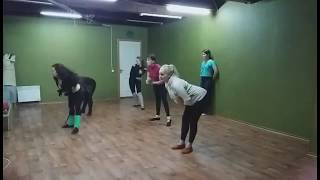 Обучение восточным танцам в Днепропетровске
