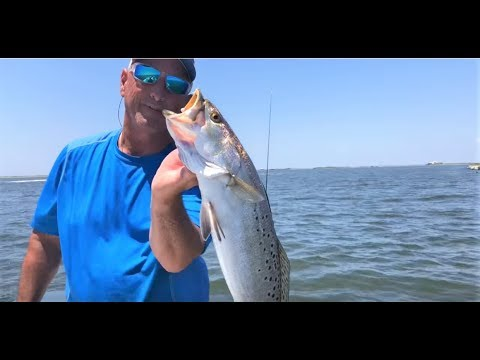 How To Catch GIANT Speckled Trout On Grand Isle