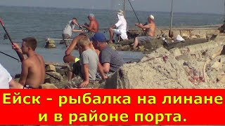 Ейск рыбалка на лимане и в районе порта