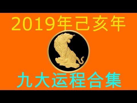 2019年己亥年九大运程大合集:肖虎者