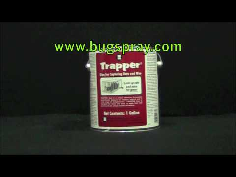 Trapper Bulk Glue Product Spotlight for Glueboards
