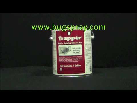 Trapper Bulk Glue Product Spotlight for Glueboards