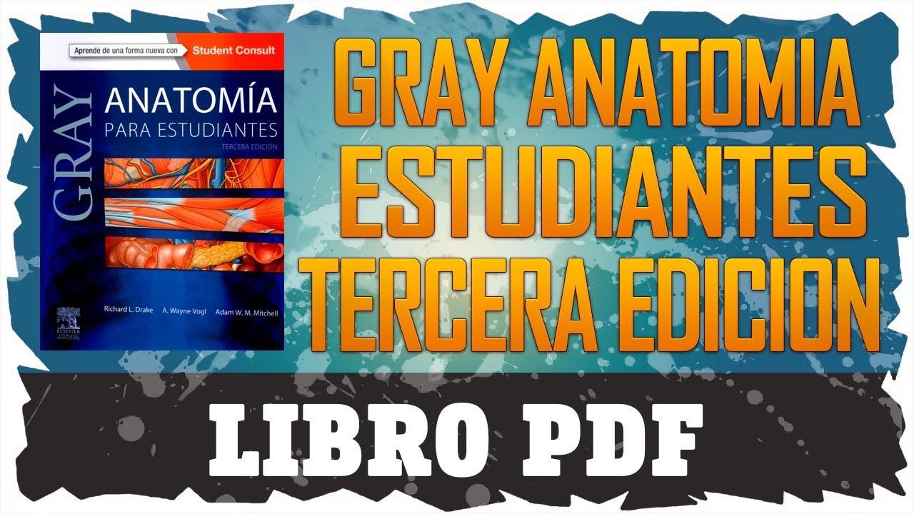 GRAY ANATOMÍA PARA ESTUDIANTES | 3RA EDICION | LIBRO | PDF | GRATIS ...