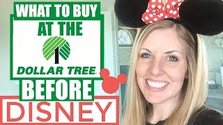 9 Things to Buy at the Dollar Tree BEFORE Going to Disney!
